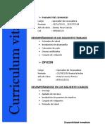 Curriculum Vitae 02