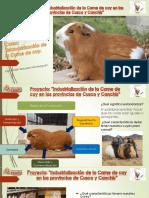 Diapositivas estandarización  carne de cuy para camal