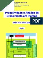 Análise de crescimento.pdf