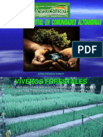 Desarrollo Forestal