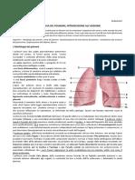 34 Anatomia II 10.03.2016 Topografia Dei Polmoni Introduzione Alladdome