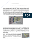 43-Anatomia II-14.04.2016- Fegato, Pancreas e Milza