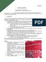 44-Anatomia Umana II-18.04.16-Anatomia Microscopica Apparato Digerente