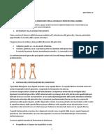 50-Anatomia II- 04.05.16- Articolazione Del Ginocchio, Della Caviglia e Muscoli Della Gamba
