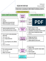 proces_de_munca_fisa_de_documentare_simedru_viorela.pdf