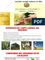INGENIERÍA_FORESTAL_Y_AMBIENTAL___Proyeccion_universitaria[1].pptx