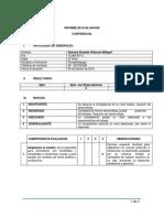 Informe Dennise Villarroel