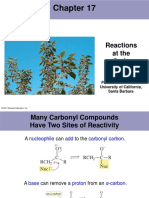 17_Lecture_alfa_carbon_Reactions.pptx