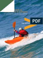 Accenture Brazil Risk Analysis
