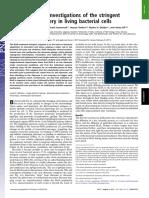 2011_English_relA binds or unbinds ribosome.pdf