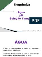 Bioquímica Aula 2 - água, pH e Tampões