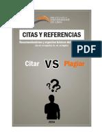 3_ Citas_referencias_apa.pdf