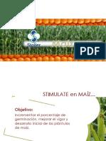 Stimulate en Maiz