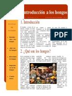 INTRODUCCION A LOS HONGOS.pdf