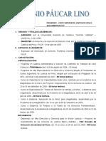 AntonioPaucar Propuesta de Trabajo CSJPasco