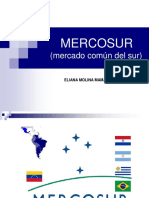MERCOSUR Exposicion trabajo