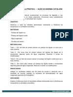 2901.pdf