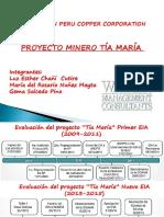 Eia Detallado Del Minero Del Proyecto Tía María
