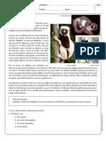 lemur.pdf