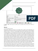 Historia de Los Chiitas.pdf