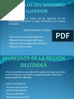 4Musculos del Miembro Superior 2018.ppt