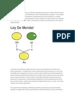 313748319-Leyes-de-Mendel-Estructura-Adn.docx