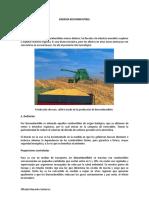 197829334-informe-biocombustible.docx
