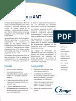 Intro_AMT-es_4-24-2015