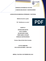 Caso Clinico Dirofilariasis
