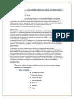 Componentes de La Cadena Respiratoria Efecto de Inhibidores