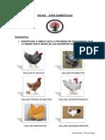 En 004 Aves Domesticas