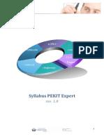 Syllabus Pekit Expert 1.0