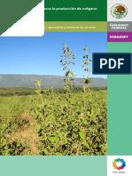 Botanica - Agricultura - Paquete tecnologico para la produccion de Oregano (Lippia spp.).pdf