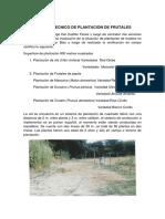 Informe Tecnico de Plantación de Frutales