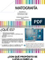 Cromatografia f
