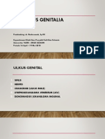 Ulkus Genitalia