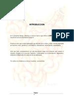 155074767-Intestino-Delgado-TRABAJO.docx
