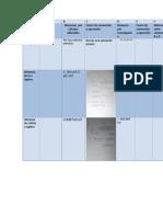 Actividad-de-Organizacion-fisica-2-etapa-2 (1)