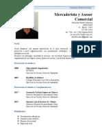CV sneyder Bustos.doc