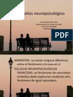 analisis neuropsicológico
