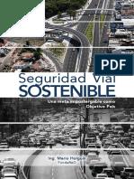 Seguridad Vial Sostenible. Org 01-18-2018