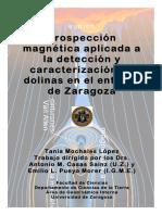 Mochales_06_Postgrado[1].pdf
