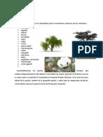 288778057 Flora y Fauna de La Region de Ica