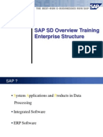 SD Overview Enterprise Structure