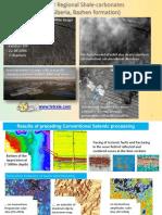 2011_3D DWM for Reginal Shale-carbonates & Space Images -West Siberia