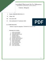 386_DERECHOPROCESALII.pdf