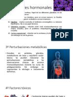 2º Factores hormonales.pptx