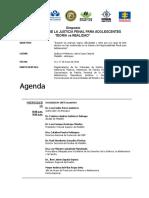 Agenda  Simposio  10 años SRPA - MEDELLIN