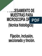 Práctica 1 -Técnica Histológica