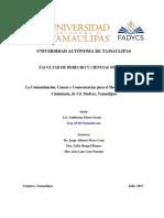 La Contaminación, Causas y Consecuencias Para El Medio Ambiente y La Ciudadanía, de CD. Madero, Tamaulipas